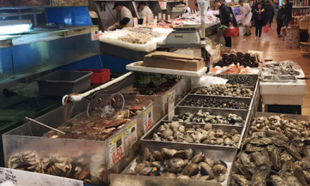 中国城超市布鲁克林分店独家折扣
