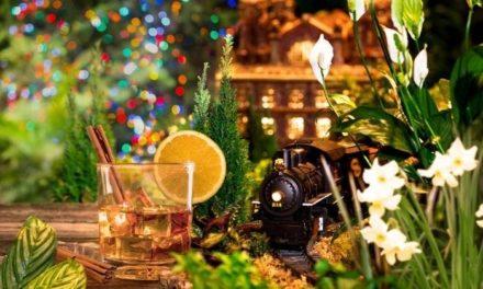 打包13大冬季限定活动展览+假日集市,感恩节留在纽约也能玩的开心~
