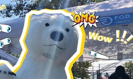 NYC惊现大白熊,真相原来是这样……